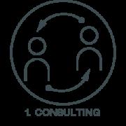 Consulting von smartfabrik